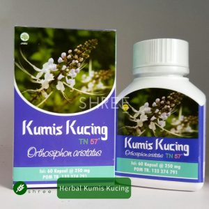Jual herbal kumis kucing